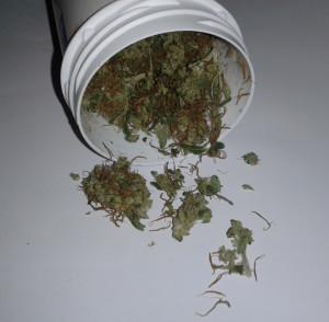 Meine ADHS Therapie: Cannabisblüten zusammen mit Ritalin