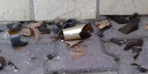 """Fakt: Scherben sind die größte Gefahr im Bereich """"Müll auf der Straße"""""""