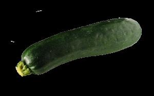 zucchini-700384